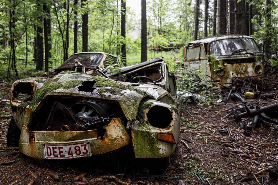Alte Autos im Wald